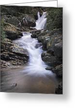 Skinny Dip Falls - Blue Ridge Mountains Greeting Card