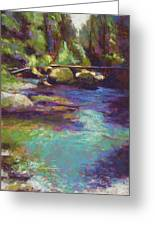 Skokomish River Greeting Card