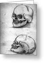 Skull Drawing Greeting Card