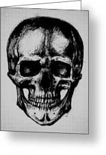 Skull In Shadow Greeting Card