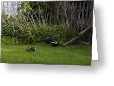 Skunk And Rabbit Surprise Greeting Card