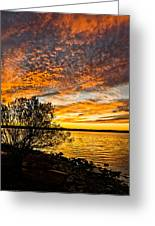 Sky Afire Greeting Card