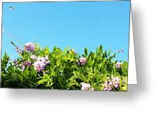 Sky Flower Greeting Card