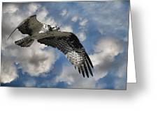 Sky Pilot Greeting Card