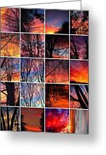 Sky Tunes Greeting Card