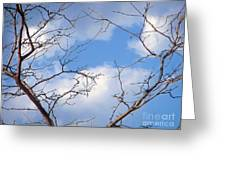 Look At The Blue Sky Greeting Card
