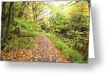 Skylands Trail H Greeting Card