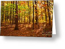 Skyline Drive At Low Gap Shenandoah National Park Greeting Card