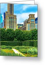 Skyline From Lurie Garden Dsc2670 Greeting Card