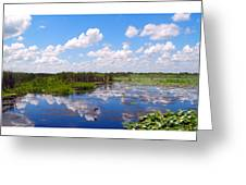 Skyscape Reflections Blue Cypress Marsh Florida Collage 1 Greeting Card