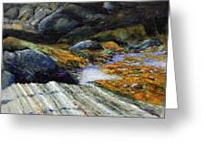 Slack Tide Greeting Card
