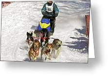 Sled Dogs In Action Greeting Card