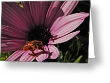 Sleek Bee Greeting Card