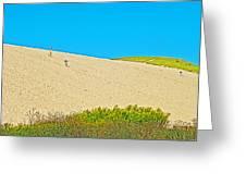 Sleeping Bear Dune Climb In Sleeping Bear Dunes National Lakeshore-michigan Greeting Card