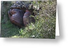 Sleeping In The Jungle - Stone Face In Forest Greeting Card