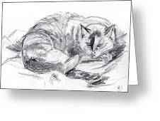 Sleeping Jago Greeting Card