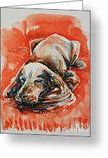 Sleeping Spaniel On The Red Carpet Greeting Card