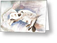Sleeping Together Greeting Card