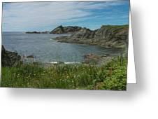 Sleepy Cove Greeting Card