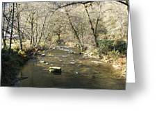 Sleepy Creek Greeting Card