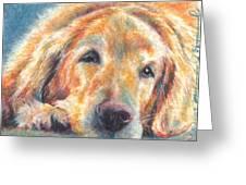 Sleepy Dog Greeting Card by Melissa J Szymanski