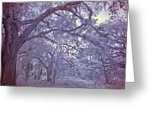 Sleepy Hollow's Muse Greeting Card