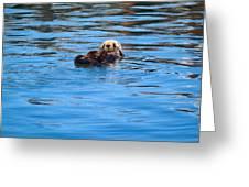 Sleepy Otter Greeting Card