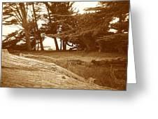 Sleepy Shore Sepia Greeting Card