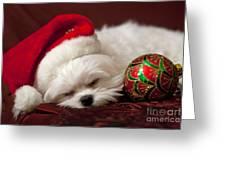 Sleepy Time Greeting Card by Leslie Leda