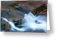 Slide Rock Greeting Card by Kelly Wade
