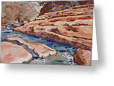 Slide Rock Greeting Card by Sandy Tracey