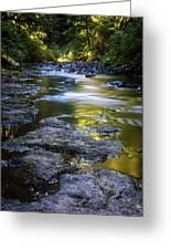 Sliver Creek Greeting Card