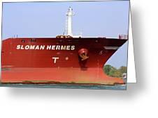 Sloman Hermes Detail 051718 Greeting Card