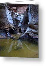Slot Canyon In Zion National Park Greeting Card
