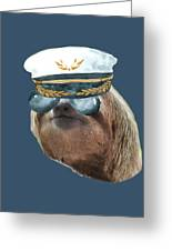 Sloth Aviator Glasses Captain Hat Sloths In Clothes Greeting Card