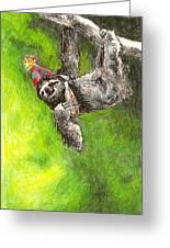 Sloth Birthday Party Greeting Card