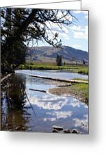 Slough Creek 1 Greeting Card