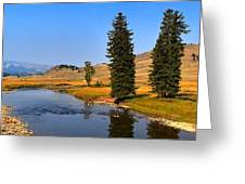 Slough Creek Afternoon Panrama Greeting Card