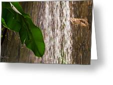 Slow Motion Tropical Waterfall Greeting Card