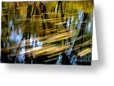 Slow Moving Stream - 2959 Greeting Card