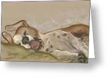 Slumbering Grace Greeting Card