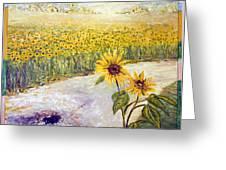 Slunecnice1 Greeting Card