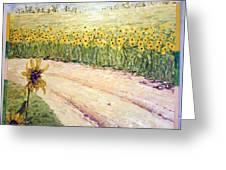 Slunecnice3 Greeting Card