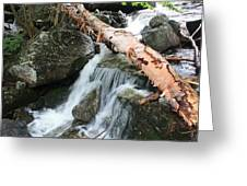 Small Beautiful Waterfalls Greeting Card by Tom Johnson