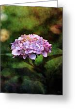 Small Blossoms 2388 Idp_2 Greeting Card