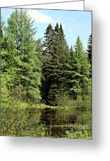 Small Country Pond Greeting Card