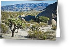 Small Joshua Tree Greeting Card