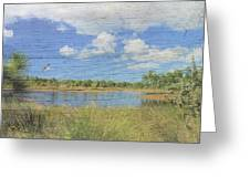 Small Pond With Weathered Wood Greeting Card