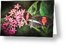 Small Postman - Pink Flower Burst Greeting Card
