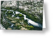 Small River In Forest In Winter Greeting Card